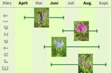 Kräuterweg - Kalender, Erntezeit